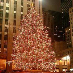 : New York City ChristmasTree