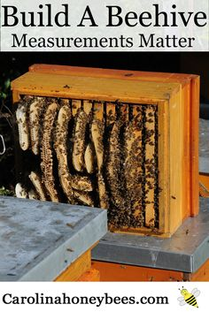 Use a good plan to build a bee hive properly. Carolina Honeybees Farm