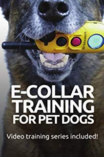 E Collar Training For Pet Dogs The Only Resource You Ll Need To