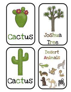 Preschool Printables: Desert Animals Bulletin Board Cards