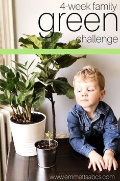 An easy, family-friendly four week challenge to get the whole family living and thinking more green Mom Daughter Dates, Positive Discipline, Raising Boys, Attachment Parenting, Parent Resources, Go Green, Mom Blogs, Family Activities, Homemaking