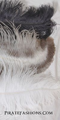 Large Ostrich Feathers – Pirate Fashions