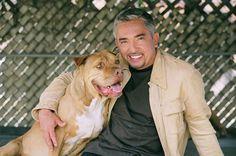 Dog Whisperer Cesar Millan's top dog training tips