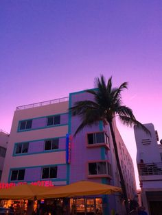 Ideas For Palm Tree Aesthetic Yellow Purple Aesthetic, Retro Aesthetic, Aesthetic Photo, Aesthetic Pictures, Vaporwave, Photo Wall Collage, Belle Photo, Aesthetic Wallpapers, Scenery