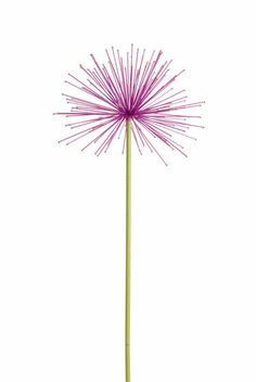 "Everlasting Alliums, oversize steel flowering alliums painted in bright colors and each spike is tipped in gold for added sparkle. 10"" diameter flower heads on slender steel stakes 29"" and 35"""