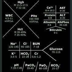 Normal lab ranges
