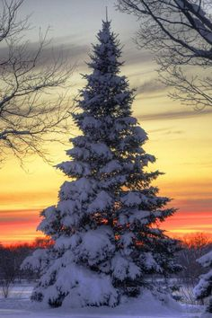 Winter sunset peacefulness
