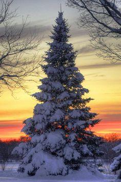 Winter sunset peacefulness