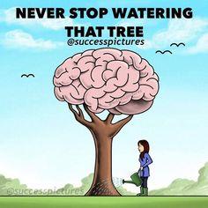 Hören Sie niemals auf, diesen Baum zu gießen Motivational Pictures, Inspirational Quotes, Motivational Quotes, Reality Quotes, Life Quotes, Status Quotes, Music Quotes, Success Quotes, Positive Affirmations