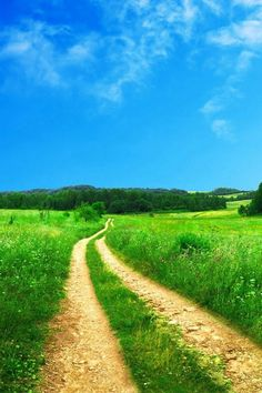 Country road take me home. Landscape Pictures, Nature Pictures, Landscape Photography, Nature Photography, Felder, Nature Wallpaper, Htc Wallpaper, Scenery Wallpaper, Wallpaper Pictures