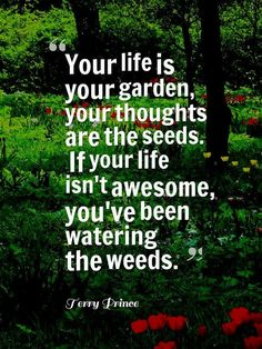 Your life is your garden...