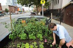 Urban Farming Is Growing a Green Future - Truck Farm Project