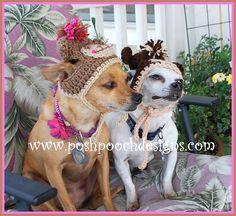 Ravelry: Monkey Dog Beanie Hat pattern by Sara Sach