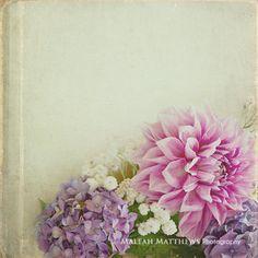 Dahlia Hydrangea Flower Bouquet Photo, shabby chic pink white lavender beige vintage inspired home decor, girl nursery wall art on Etsy, $15.00
