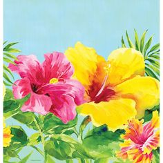 Heavenly Hibiscus Plastic Tablecover Border Print 54 Inchx102 Inch/Case of 12