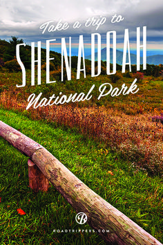 The pristine 200,000 miles of Shenandoah National Park waits to be explored by you!