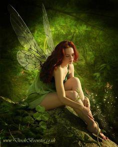 *+*Mystickal Faerie Folke*+*... Woodland Fairy... By Artist Derek Brewster...