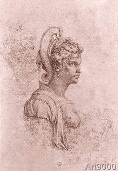 Comparison of Zenobia and Me