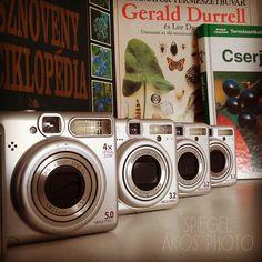 Gerald Durrell, Garden, Garten, Lawn And Garden, Gardens, Gardening, Outdoor, Yard, Tuin