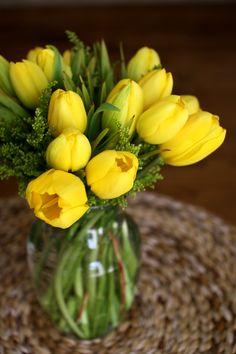 Yellow Tulip: Hopelessly in love