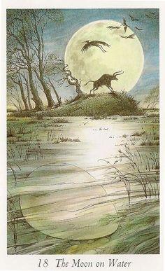 The Moon on Water - Wildwood Tarot