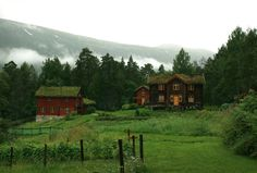 (̏◕◊◕)̋ wooden houses with grass roofs