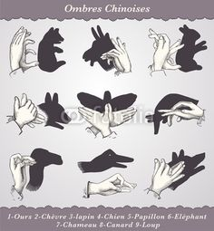 Find Shadows Puppets Vintage Engraved Illustration Dictionnaire stock images in HD and millions of other royalty-free stock photos, illustrations and vectors in the Shutterstock collection. Thousands of new, high-quality pictures added every day. Shadow Puppets With Hands, Preschool Projects, Kids Crafts, Hand Shadows, Gravure Illustration, Puppets For Kids, Finger Art, Engraving Illustration, Kindergarten Art
