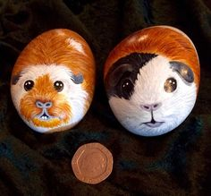 Guinea pig hand painted pebble...so sweet!