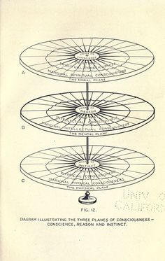 """""""Diagram illustrating the three planes of consciousness - conscience, reason and instinct."""" The physiology of faith and fear. Philosophy Of Mind, Physiology, Science Fiction, Illustration Art, Spirituality, Diagram, Mindfulness, Faith, Consciousness"""