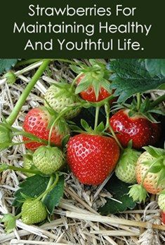 #Strawberries might have a preventive effect against #heart_disease due to their high #polyphenol content. Polyphenols are plant compounds that are good for the body Vitamins In Strawberries, Types Of Strawberries, Strawberry Plants, Strawberry Patch, Hydroponic Strawberries, Mushroom Grow Kit, Planting For Kids, Growing Mushrooms, Summer Plants