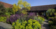 Courtyard garden - Tom Stuart-Smith