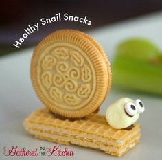 Healthy Bug & Insect Snacks #preschoolnacks #bugtreats #fruitsnacks #schoollunch #bugsnacks #insectsnacks #bugsnacksfortoddlers #bugsnacksforkids #healthysnacksforkids
