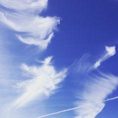 angels in the skies #nikicottonartdotcom #photography #art #angels #blueskies #cloudformtion