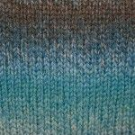 Cascade Colors Kroy Socks Bernat