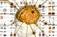 #Neurociencia : Tips para mejorar la memoria