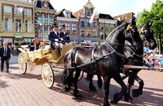 Leeuwarden King Willem Alexander and Queen Maxima were sitting in a gorgeous new carriage drawn by their two beautiful Friesian Horses
