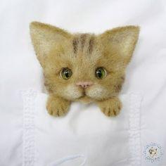 Gallery.ru / Фото #36 - котики отк - cherepaha-i