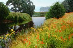 Michael James Smith Landscapes - 08