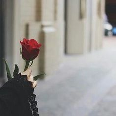 Allah knows,and that's enough for me.I love you Allah Muslim Girls, Muslim Couples, Muslim Women, Islam Muslim, Islam Quran, Muslim Hijab, Beautiful Hijab, Beautiful Flowers, Hijab Cartoon