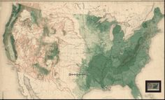 MAP OF THE AVERAGE DENSITY OF EXISTING FOREST IN THE US. Prepared under the direction of C.S. Sargent, Special Agent. Description of a territory based on the reading of Forest systems