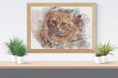 Cross Stitch Pattern: watercolour red mackerel tabby cat kitten fur baby Stitchy Wonders - embroidery art chart download PDF Watercolor Red, Watercolor Pattern, Hand Embroidery Patterns, Embroidery Art, Cross Stitch Fabric, Cross Stitch Patterns, Pattern Making, Cats And Kittens, Fur Babies