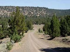 County Highway #64 into Modoc National Forest and South Warner Wilderness