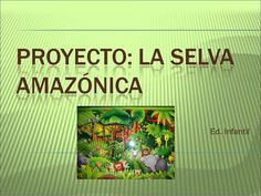 Proyecto La selva amazónica by veralca82 via slideshare