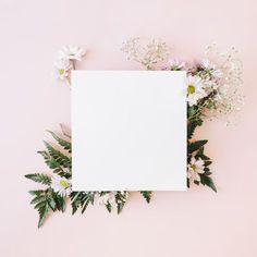 17 ideas flowers png overlay for 2019 Framed Wallpaper, Flower Background Wallpaper, Flower Backgrounds, Wallpaper Backgrounds, Iphone Wallpaper, Pastel Plain Background, Blog Backgrounds, V Instagram, Story Instagram