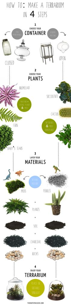 How To: Make a Terrarium