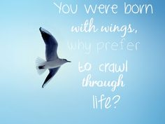 #You were born with wings,why prefer to crawl through life?