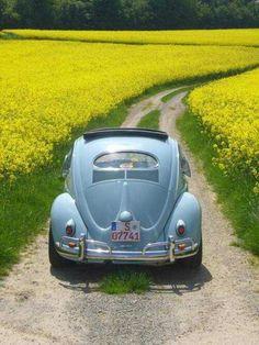 VW Fusca e a paisagem