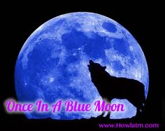 Wolf howling and blue moon Teen Wolf, Talking To The Moon, Bobby Vinton, Moon Pictures, Moon Photos, Bob Seger, Moon Magic, Number Two, Blue Moon