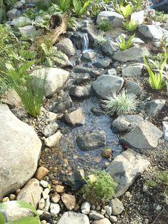 I recommend much more information on Mulch Landscaping Mulch Landscaping, River Rock Garden, Water Garden, Backyard Stream, Native Garden, Landscape Design, Naturalistic Garden, Backyard Water Feature, Water Features In The Garden