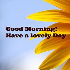 #goodmorning have an lovely day!